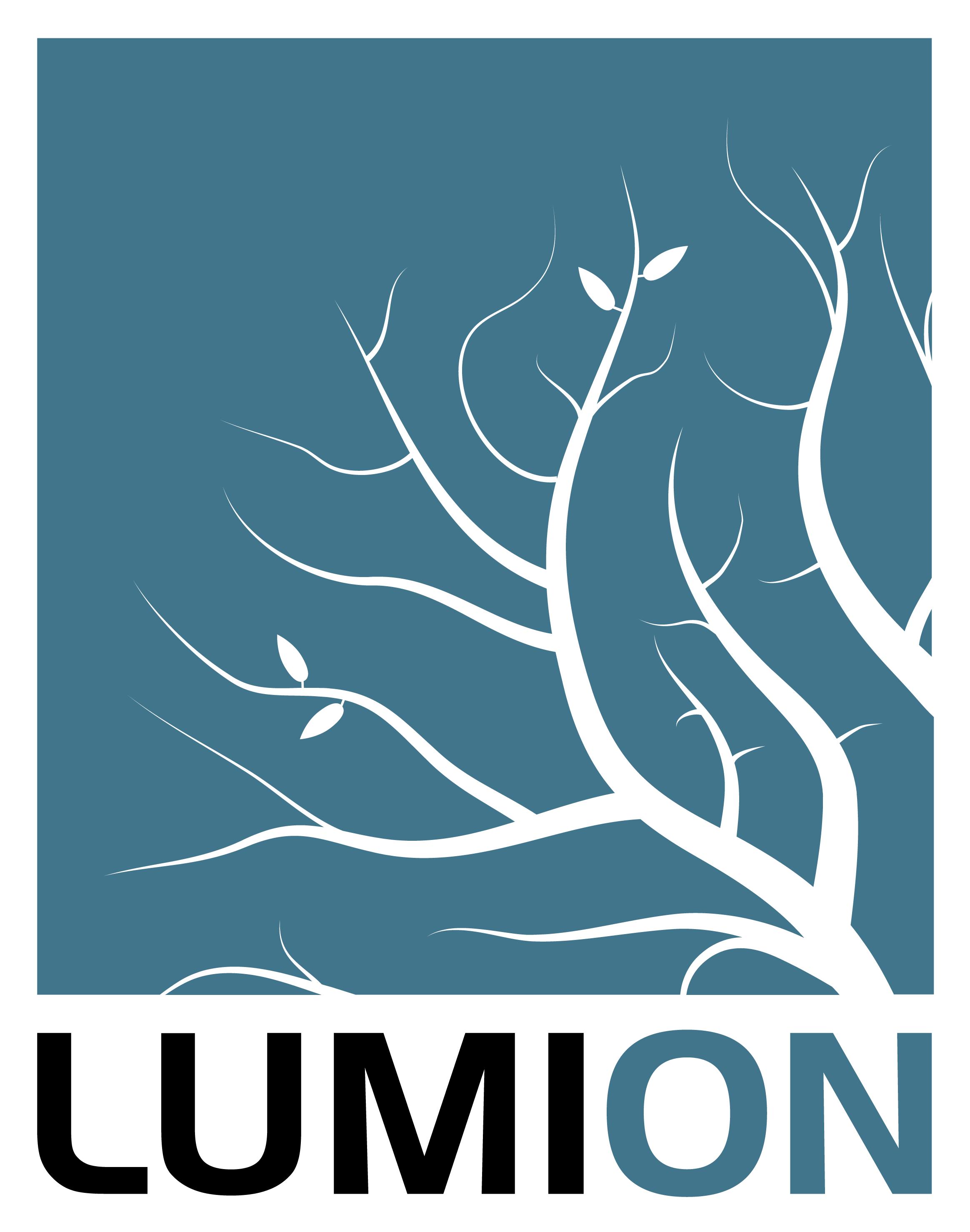 Logo Lumion Eurostudio